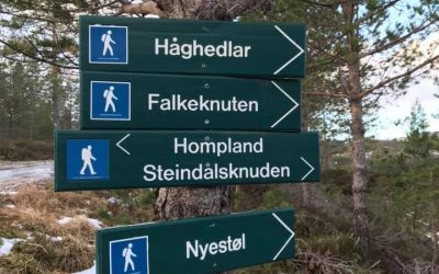 Tur til Steindalsknuden 2019